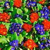 Как создать цветочную клумбу, которая будет цвести всё лето