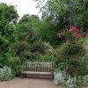 Ландшафтный дизайн: методика «сада непрерывного цветения»