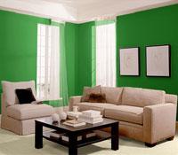 Зеленый цвет символизирует природу