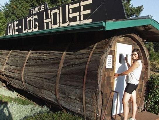 Дом, выдолбленный из ствола дерева
