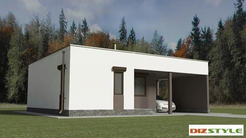 Одноэтажный загородный дом